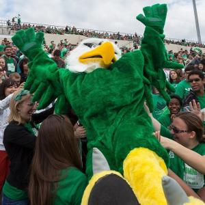UNT mascot Scrappy crowd surfing at a football game